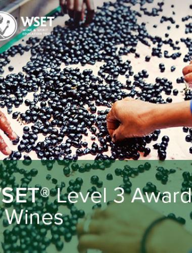 WSET Level 3 in Wines